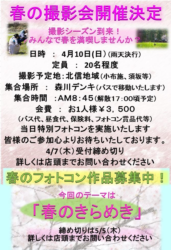 2016410春撮影会