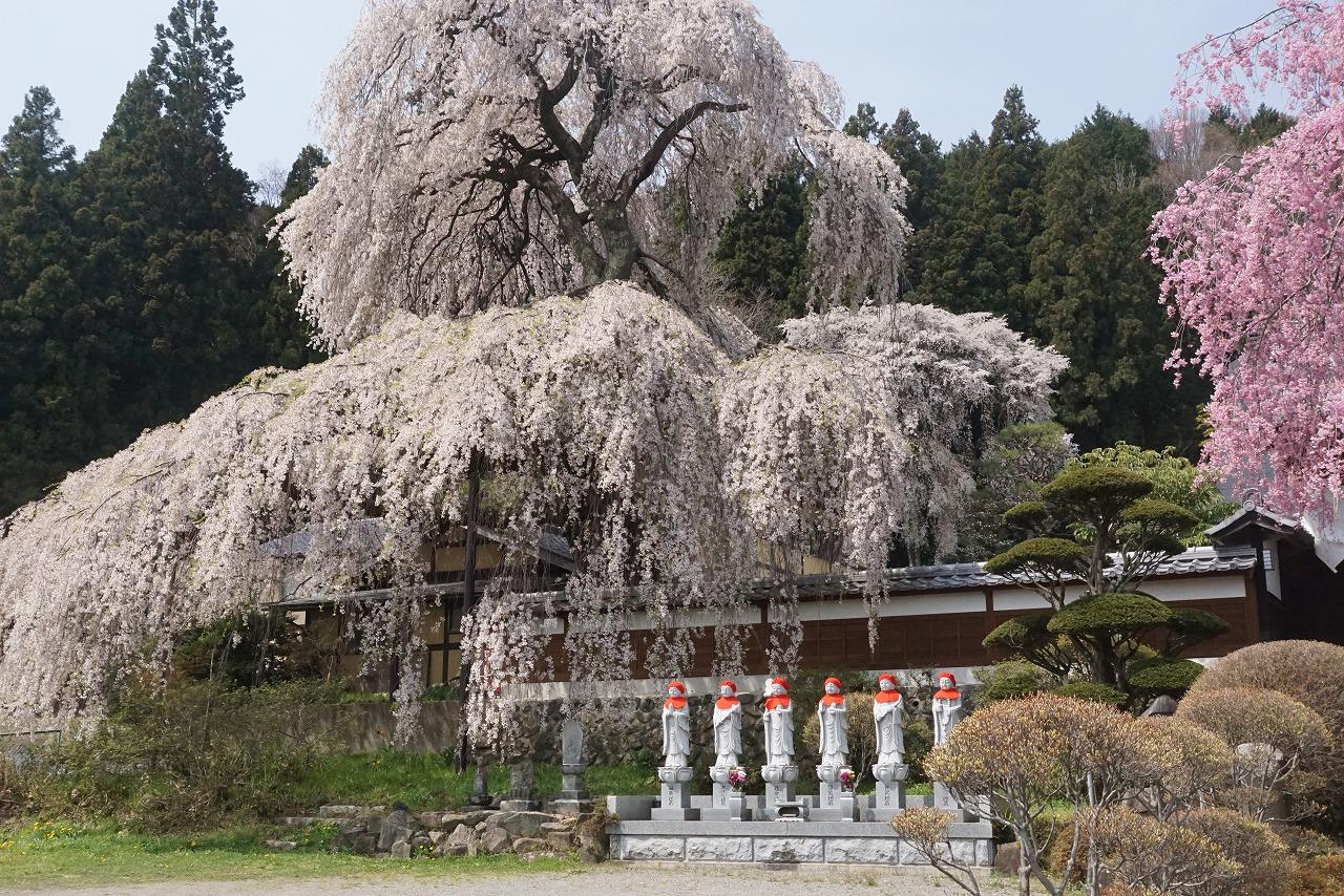 ⑬山寺の春